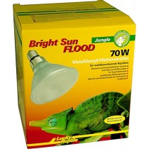 Bright Sun FLOOD Jungle 70W
