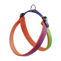 AGILA DUAL 6 HARNESS PURP-OR.